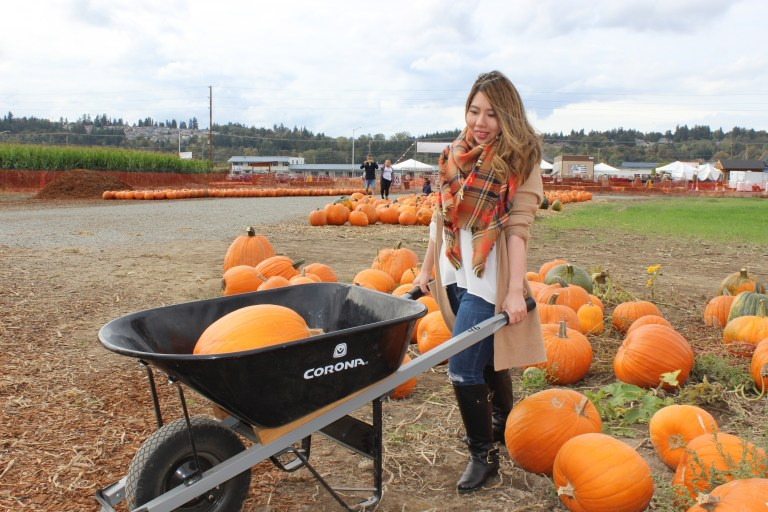 pumpkinpatch-3
