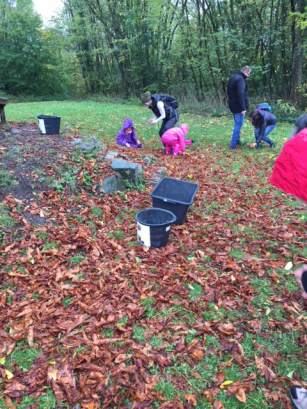 Kinder suchen bei der Burgruine fleißig nach Kastanien und Eicheln