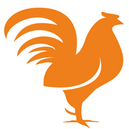 DZ_Logo_129