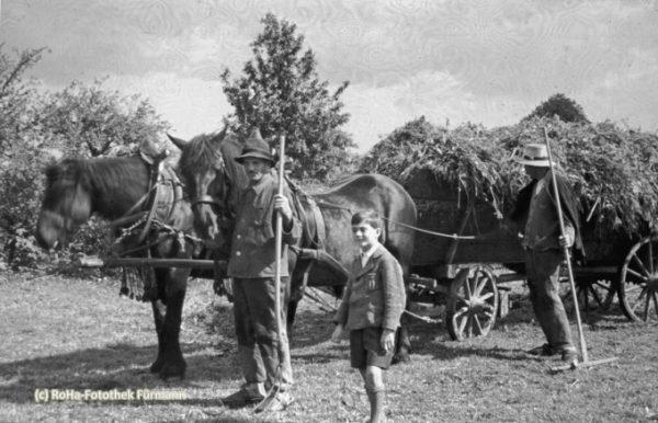 landwirtschaftliche Arbeit mit eisenbereiftem Wagen - Gras holen - Eingrasen - Wagen von Pferden gezogen Foto entstanden vor 1950