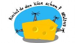 NRW 2017. Der Käse beginnt zu stinken