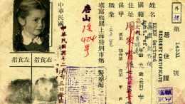 Der chinesische Pass von Gertrud Kohn