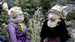 Goldhaubenfrauen