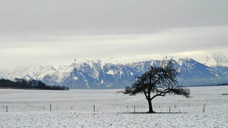 Der Untersberg | Foto: Karl Traintinger