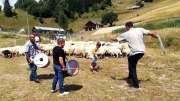 In den Pausen beim Schafscheren wurde zu traditioneller Musik getanzt