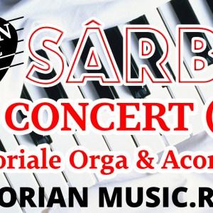 Sarba Concert - tutorial