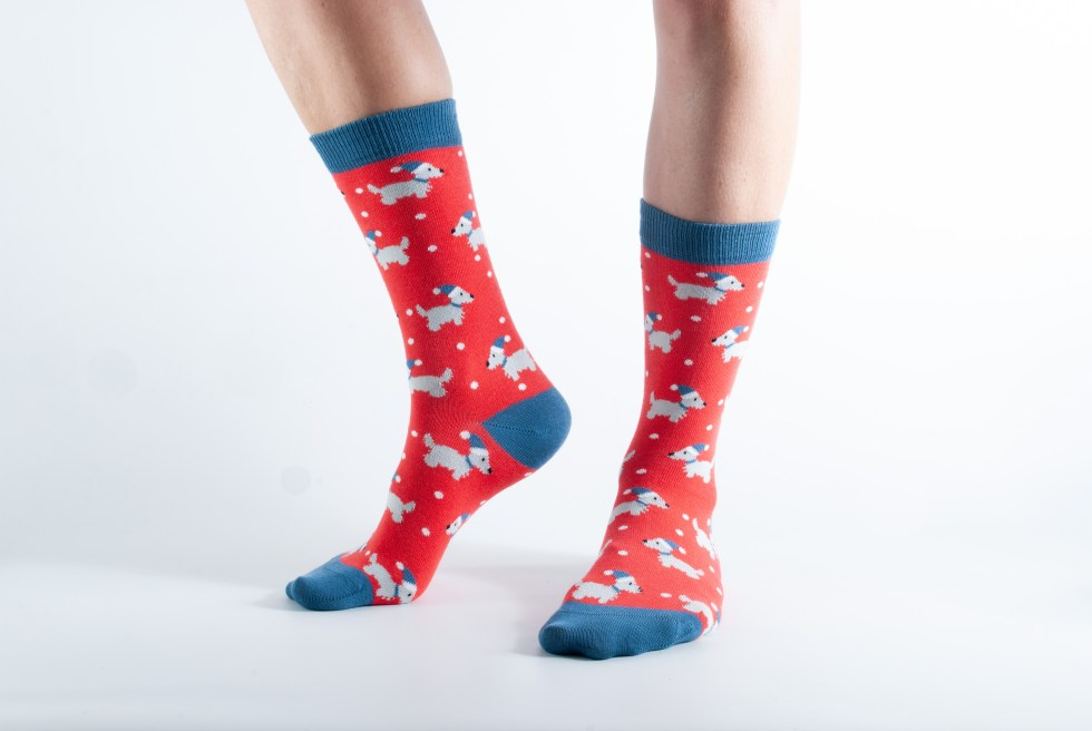 Womens Scottie Dog bamboo socks - blue and red