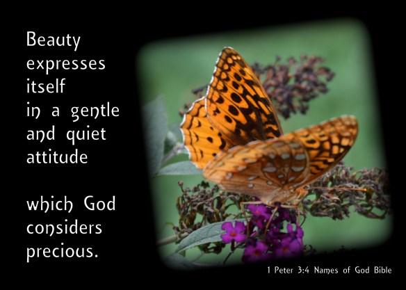 Gentle & Quiet