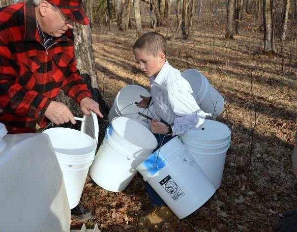 Gathering Buckets (13)
