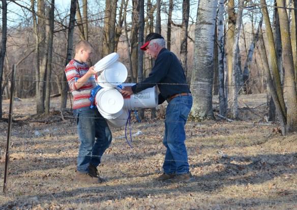 Gathering Buckets (25)