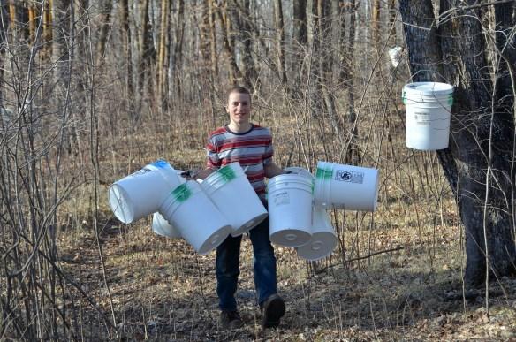 Gathering Buckets (4)