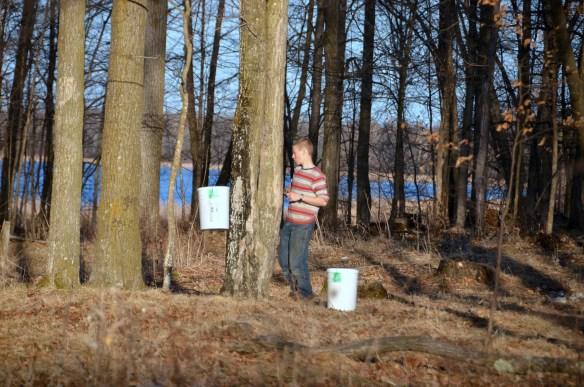 Gathering Buckets (49)