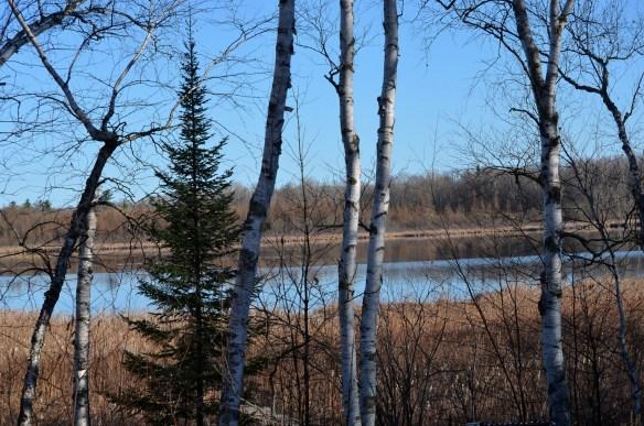 The Lake (2)