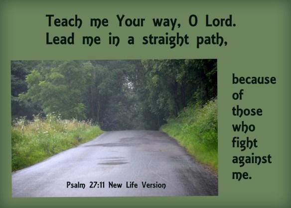 Psalm 27-11