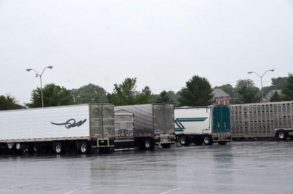Truck Rally Trucks (22)