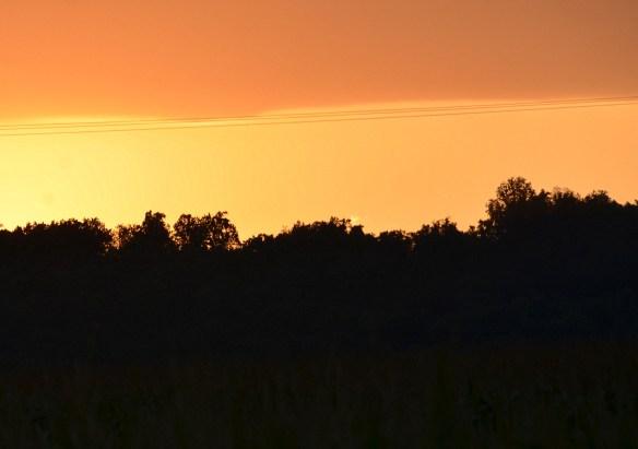 Evening Sky and Sunset (18)