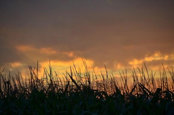 Evening Sky and Sunset (20)