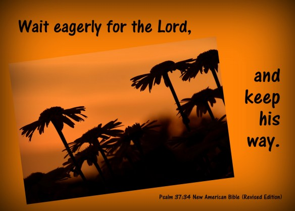 Psalm 37-4