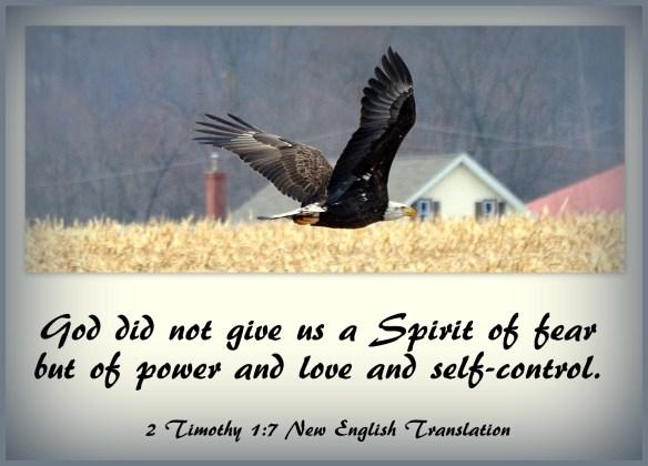 2 Timothy 1-7