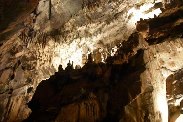 Penn's Cave (45)