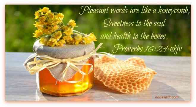 proverbs 16 scripture sweet to the soul