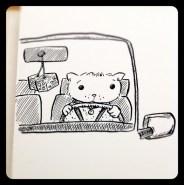 CatDrivingCar