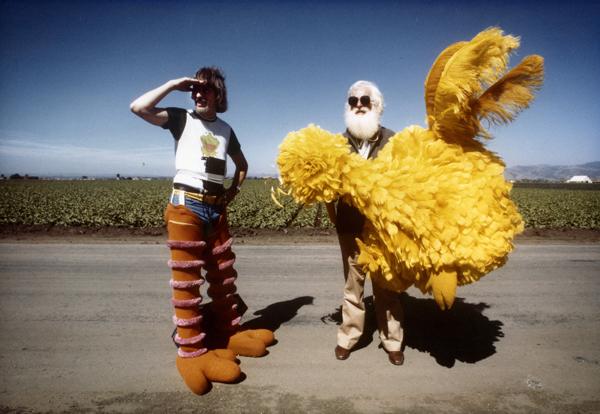 I am Big Bird
