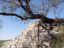 Domaine de la Quille