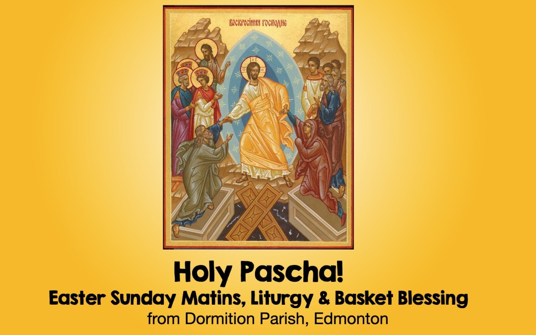 Pascal Services!