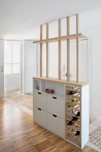 Shared Micro-Living Apartment is Surprisingly Inviting