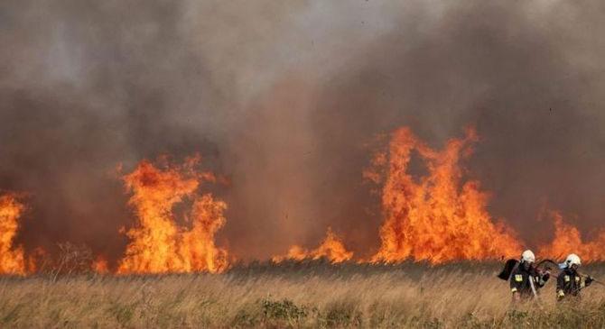Száraz fű égett Nagysáp határában