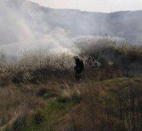 Dorog mellett Sárisápra is riasztották a tűzoltókat