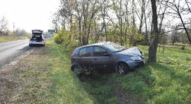 Fának csapódott egy autós Esztergom-kertvárosban