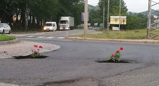 Virágokat ültetett a kertvárosi körforgalom kátyúiba az MKKP