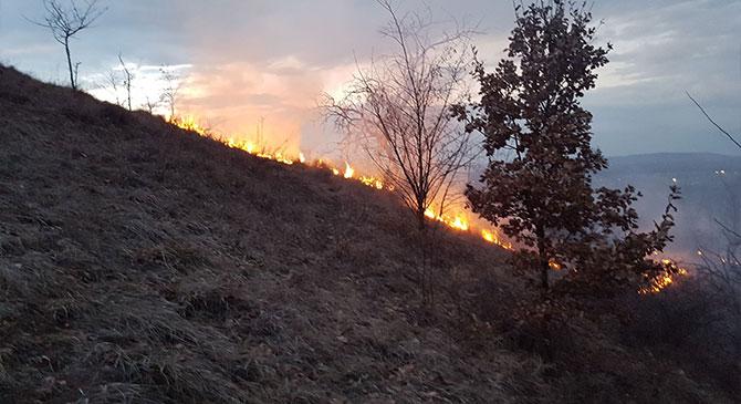 Három tűzesetnél is beavatkoztak térségünk tűzoltói