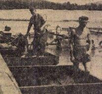 Új tó Dorogon – cikk 1959-ből