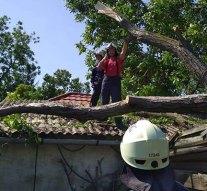 Sárisápi tűzoltók is segítettek a szabolcsi viharkárok felszámolásában