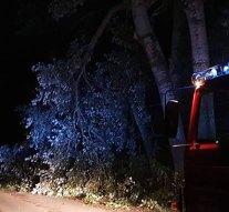 Éjjel is riasztották a tokodi önkénteseket