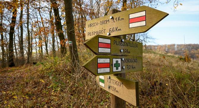 Turistajelzések újultak meg a Pilismaróti Erdészet területén