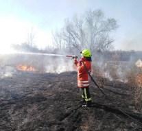 Három esethez is vonultak tűzoltóink