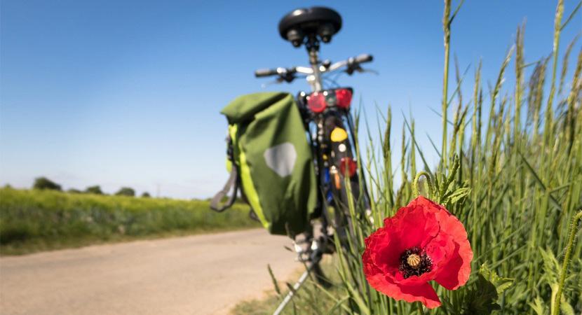 Fejlődhet a kerékpáros infrastruktúra a Dunakanyarban