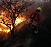 Ismét több helyen égett az aljnövényzet