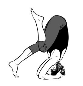 Head stand prep: Step 2