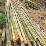 Stacks of bamboo for eco construction in our yoga retreat center near San Marcos