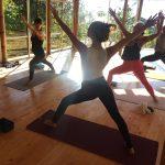 Yoga classes in Zendo Yoga Shala