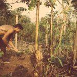 Doron working in the garden