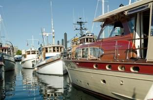 boats vic fest 1