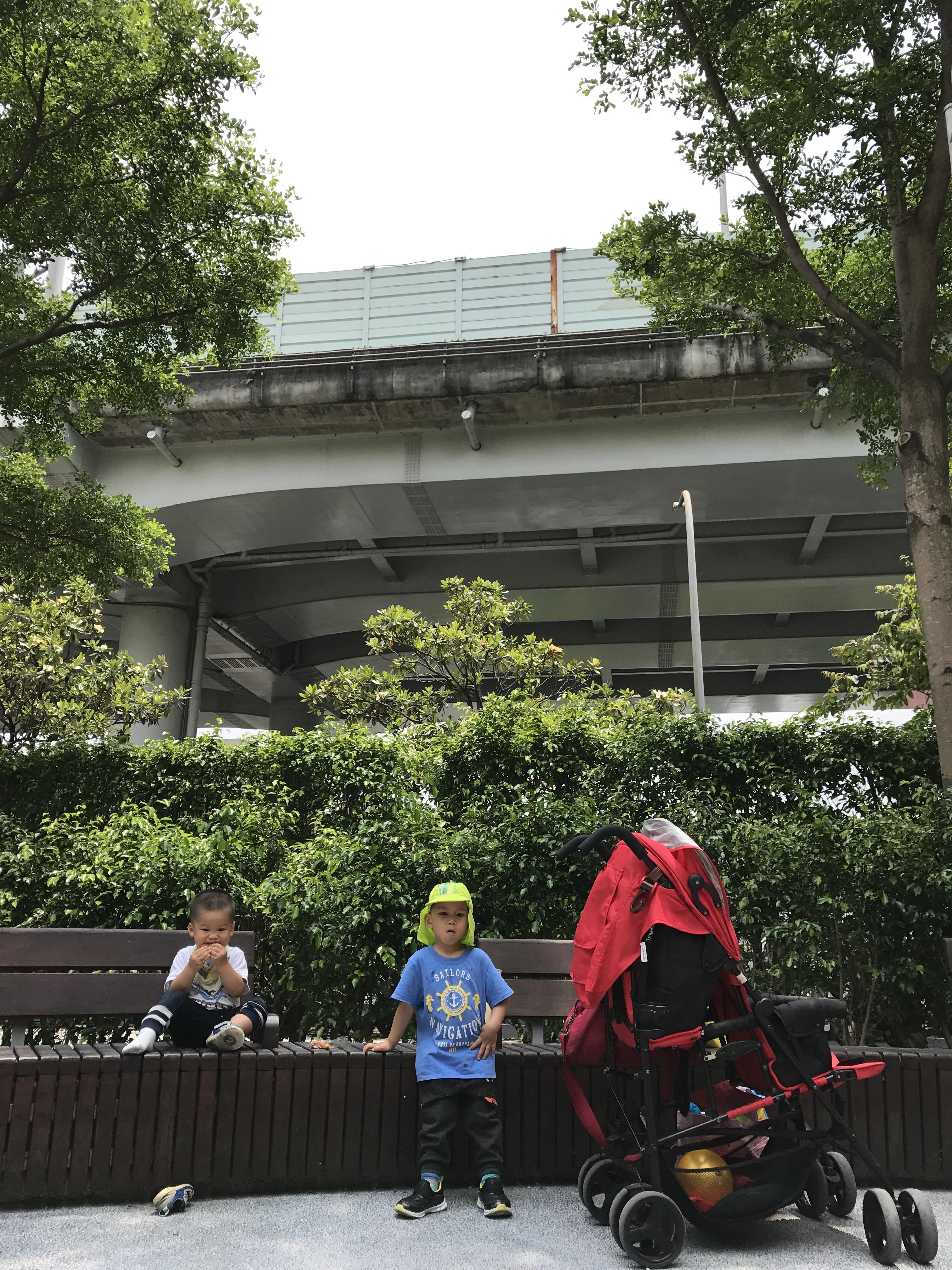 杉3Y7M&槿 2Y20170523 華山公園 – dorothyliving