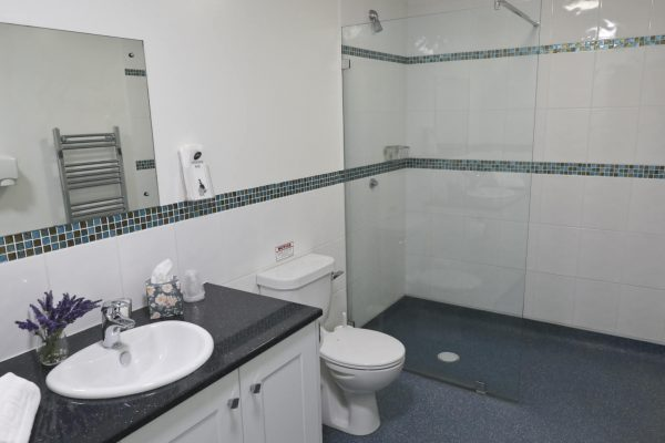 Clean Toilet and Shower With Hot Running Water
