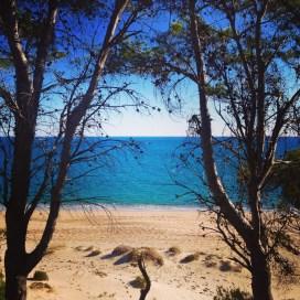 La playa del Torn